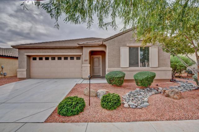17589 W Larkspur Drive, Surprise, AZ 85388 (MLS #5847903) :: Scott Gaertner Group