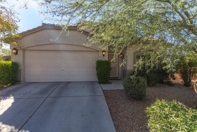 3883 W Five Mile Peak Drive, Queen Creek, AZ 85142 (MLS #5847916) :: Santizo Realty Group
