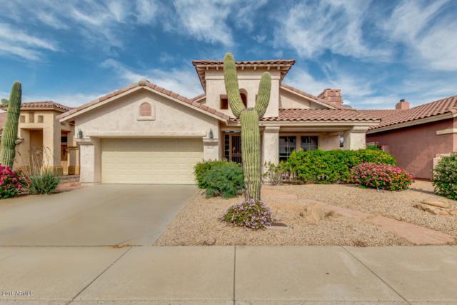 4314 E Desert Marigold Drive, Cave Creek, AZ 85331 (MLS #5847931) :: The Daniel Montez Real Estate Group