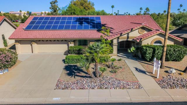 14218 W Parkland Drive, Sun City West, AZ 85375 (MLS #5847968) :: The Daniel Montez Real Estate Group