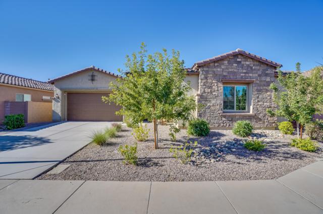 5316 S Parkwood, Mesa, AZ 85212 (MLS #5847979) :: Yost Realty Group at RE/MAX Casa Grande