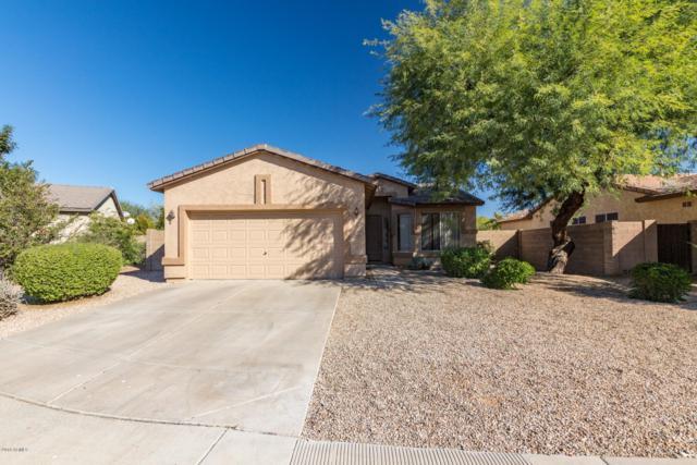 2690 E Carla Vista Drive, Chandler, AZ 85225 (MLS #5847982) :: Santizo Realty Group