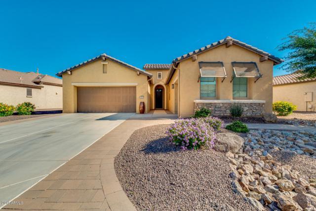 3463 N 164TH Avenue, Goodyear, AZ 85395 (MLS #5847988) :: Santizo Realty Group