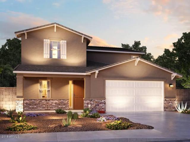 12339 W Midway Avenue, Glendale, AZ 85307 (MLS #5848004) :: Phoenix Property Group