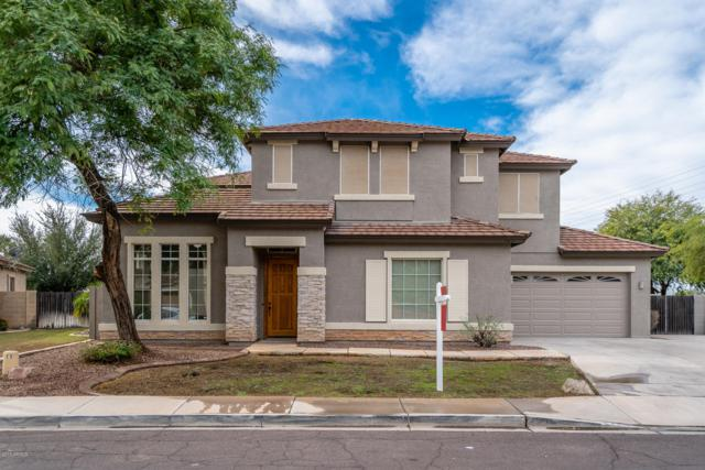 3419 E Rosa Lane, Gilbert, AZ 85297 (MLS #5848006) :: The Hastings Team