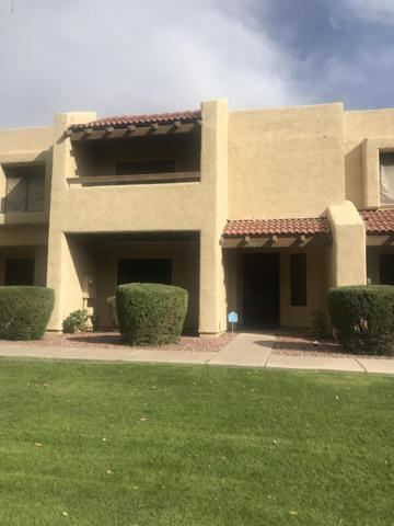 14478 N 57TH Avenue, Glendale, AZ 85306 (MLS #5848013) :: Santizo Realty Group