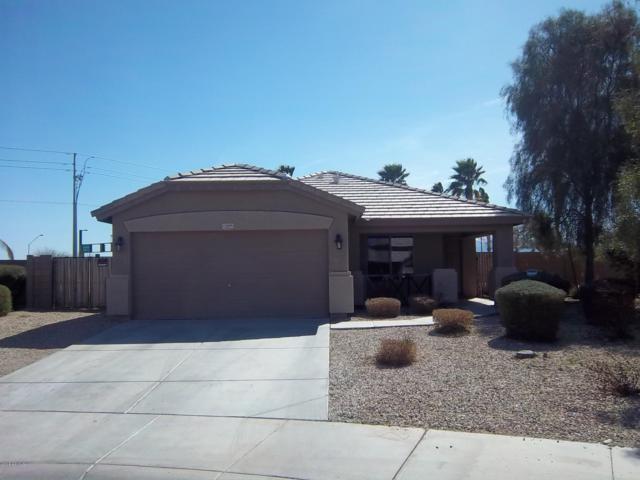 15509 W Shiloh Avenue, Goodyear, AZ 85338 (MLS #5848044) :: Santizo Realty Group