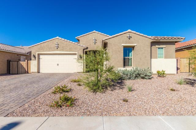 2722 E Indian Wells Drive, Gilbert, AZ 85298 (MLS #5848049) :: The Hastings Team