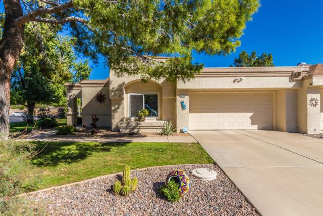 14178 W Yosemite Drive, Sun City West, AZ 85375 (MLS #5848065) :: The Daniel Montez Real Estate Group