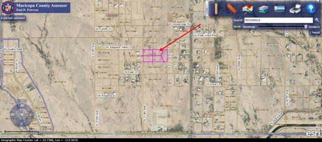 28833 N 213TH Avenue, Wittmann, AZ 85361 (MLS #5848069) :: Santizo Realty Group