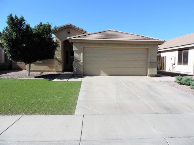 14148 N 134TH Lane, Surprise, AZ 85379 (MLS #5848081) :: Phoenix Property Group