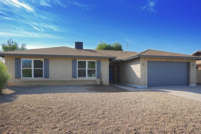 1319 E Harmony Circle, Mesa, AZ 85204 (MLS #5848084) :: Santizo Realty Group