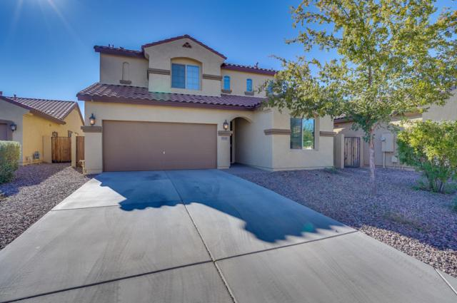 28328 N Cactus Flower Circle, San Tan Valley, AZ 85143 (MLS #5848100) :: Team Wilson Real Estate