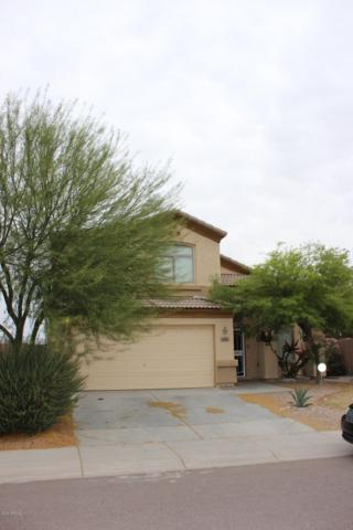24836 W Illini Street, Buckeye, AZ 85326 (MLS #5848105) :: The Results Group