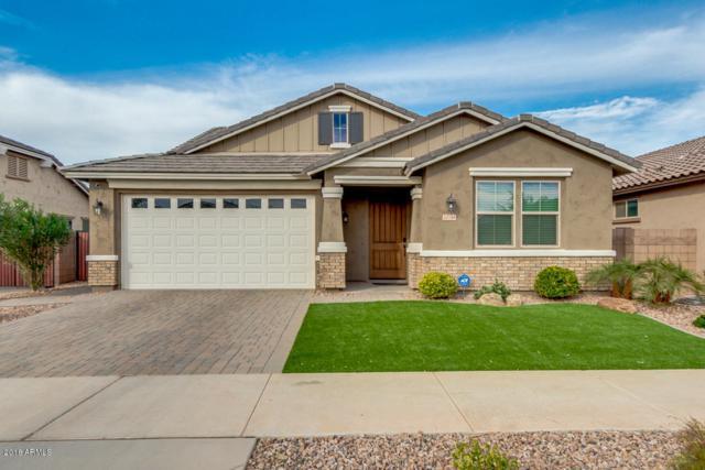 20746 E Canary Way, Queen Creek, AZ 85142 (MLS #5848147) :: Power Realty Group Model Home Center