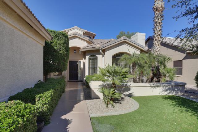 15330 W Fairmount Avenue, Goodyear, AZ 85395 (MLS #5848189) :: Phoenix Property Group