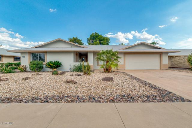 10313 W Chaparral Drive, Sun City, AZ 85373 (MLS #5848193) :: The Property Partners at eXp Realty