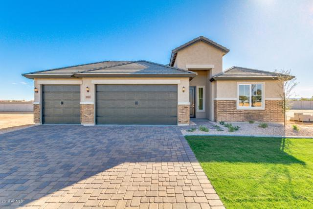 2102 W Olivia Drive, Queen Creek, AZ 85142 (MLS #5848199) :: Power Realty Group Model Home Center