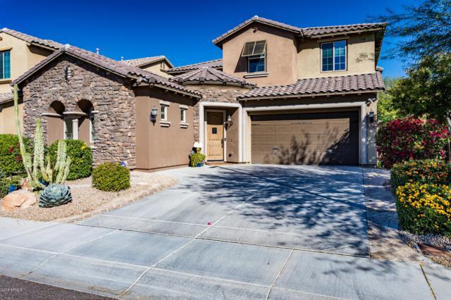 3752 E Covey Lane, Phoenix, AZ 85050 (MLS #5848201) :: Lifestyle Partners Team