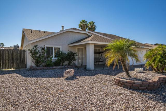 119 W Villa Rita Drive, Phoenix, AZ 85023 (MLS #5848212) :: Yost Realty Group at RE/MAX Casa Grande