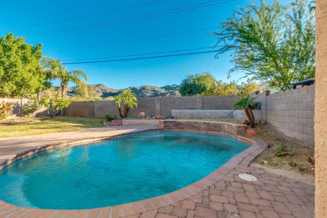 2021 E Winston Drive, Phoenix, AZ 85042 (MLS #5848216) :: Yost Realty Group at RE/MAX Casa Grande