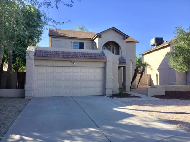1616 N Chippewa Drive, Chandler, AZ 85224 (MLS #5848236) :: The Hastings Team