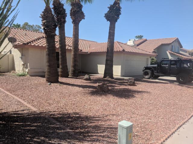 4327 E Tanglewood Drive, Phoenix, AZ 85048 (MLS #5848241) :: Keller Williams Realty Phoenix