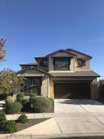 12253 N 151ST Drive, Surprise, AZ 85379 (MLS #5848248) :: Phoenix Property Group