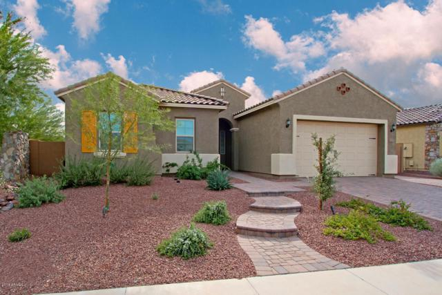 10207 W Hedge Hog Place, Peoria, AZ 85383 (MLS #5848259) :: Phoenix Property Group