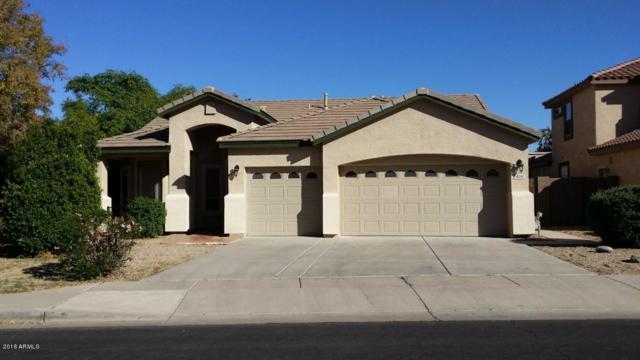 459 N Merino, Mesa, AZ 85205 (MLS #5848266) :: Yost Realty Group at RE/MAX Casa Grande