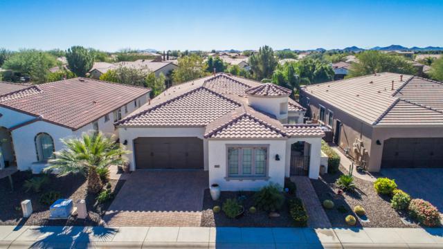 1557 E Vesper Trail, San Tan Valley, AZ 85140 (MLS #5848268) :: Conway Real Estate