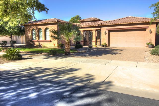 20278 E Camina Plata, Queen Creek, AZ 85142 (MLS #5848280) :: Power Realty Group Model Home Center