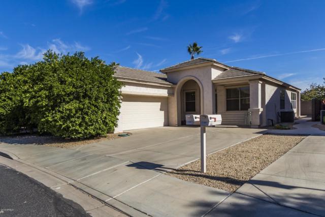 17007 N Erin Lane, Surprise, AZ 85374 (MLS #5848281) :: Phoenix Property Group