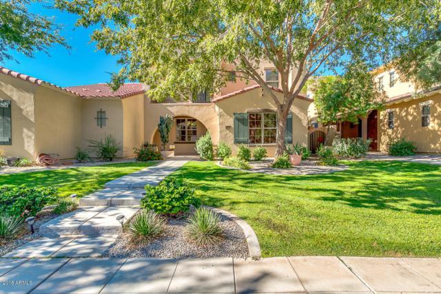 13366 N 151ST Drive, Surprise, AZ 85379 (MLS #5848293) :: Phoenix Property Group