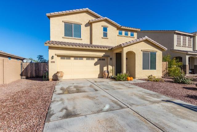 1744 W Cool Water Way, Queen Creek, AZ 85142 (MLS #5848302) :: Arizona 1 Real Estate Team