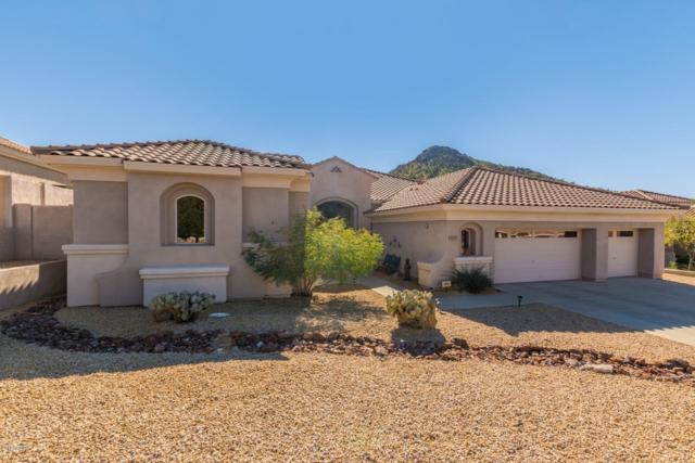 11929 E Mariposa Grande Drive E, Scottsdale, AZ 85255 (MLS #5848305) :: The Laughton Team