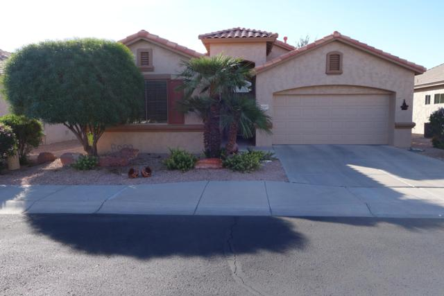 17657 W Hayden Drive, Surprise, AZ 85374 (MLS #5848315) :: Phoenix Property Group