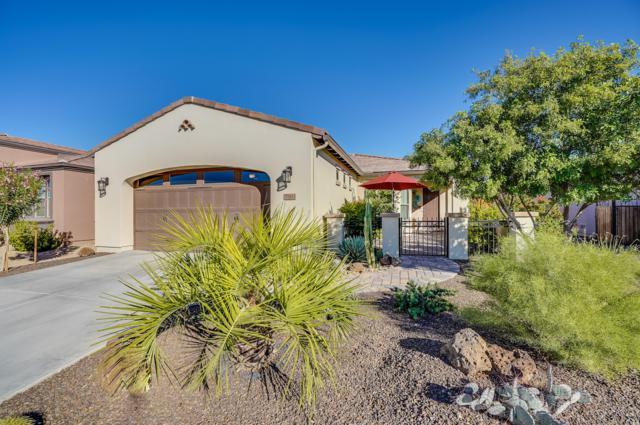 35813 N Durian Way, San Tan Valley, AZ 85140 (MLS #5848359) :: The Daniel Montez Real Estate Group