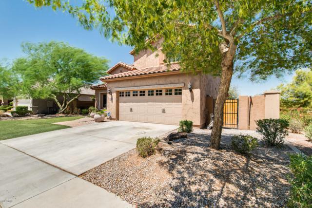 4408 S Dante Street, Mesa, AZ 85212 (MLS #5848375) :: Yost Realty Group at RE/MAX Casa Grande