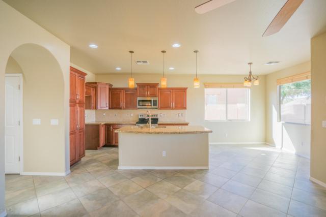 18444 W Paseo Way, Goodyear, AZ 85338 (MLS #5848379) :: The Daniel Montez Real Estate Group