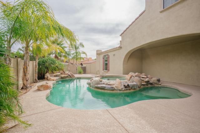 21099 W Court Street, Buckeye, AZ 85396 (MLS #5848393) :: Phoenix Property Group