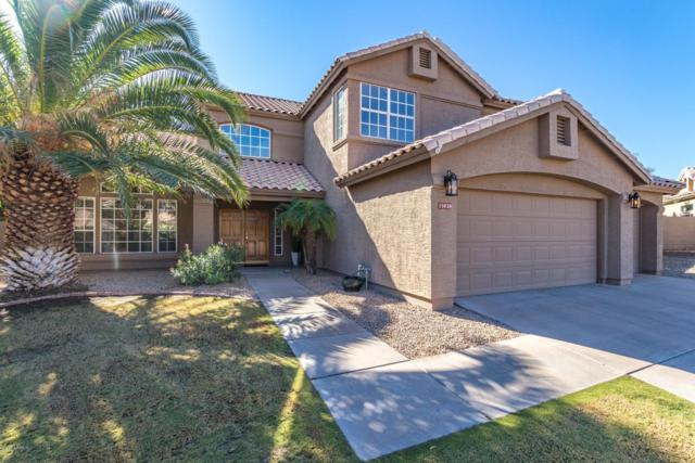 15020 S Foxtail Lane, Phoenix, AZ 85048 (MLS #5848398) :: Power Realty Group Model Home Center