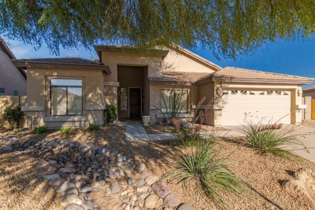 4320 E Williams Drive, Phoenix, AZ 85050 (MLS #5848408) :: Phoenix Property Group
