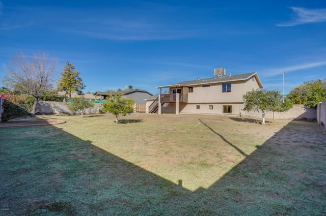 7351 E Gary Street, Mesa, AZ 85207 (MLS #5848414) :: The Daniel Montez Real Estate Group