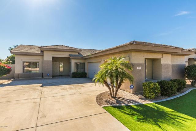 13311 W Edgemont Avenue, Goodyear, AZ 85395 (MLS #5848416) :: The Daniel Montez Real Estate Group