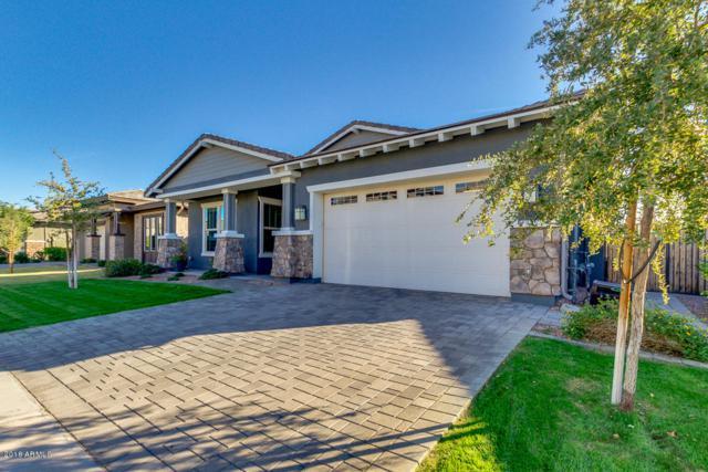 2911 E Appaloosa Road, Gilbert, AZ 85296 (MLS #5848420) :: Phoenix Property Group