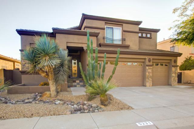 5231 E Herrera Drive, Phoenix, AZ 85054 (MLS #5848443) :: Conway Real Estate