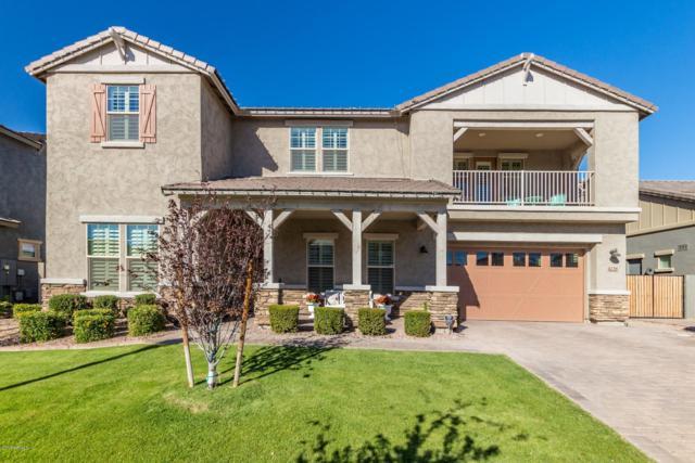 4238 E Sierra Madre Avenue, Gilbert, AZ 85296 (MLS #5848449) :: Phoenix Property Group