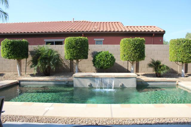 11012 N 161ST Drive N, Surprise, AZ 85379 (MLS #5848450) :: The Everest Team at My Home Group