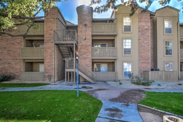 200 E Southern Avenue #338, Tempe, AZ 85282 (MLS #5848460) :: The Everest Team at My Home Group